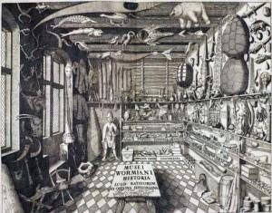 Cabinet de curiosités d'Ole Worm, frontispice de Museum Wormianum, 1655.